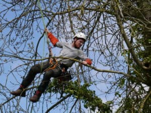 Julien Hulin, élagueur-grimpeur : pourquoi j'ai choisi ce métier ?