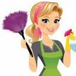 Aide Ménagère : Alyona Service